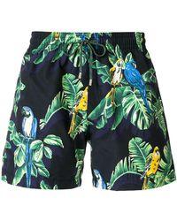 Stella McCartney - Exotic Print Swim Shorts - Lyst