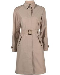 Barbour Trench Brunswick - Neutre