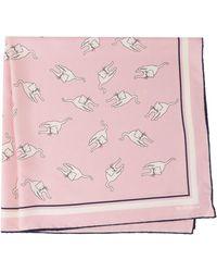 Miu Miu Printed Cat Scarf - Pink
