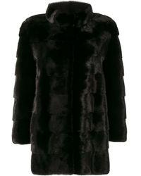Cara Mila Mila Coat - Black