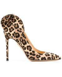 Charlotte Olympia Blake Leopard Court Shoes - Brown
