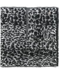 Saint Laurent Sjaal Met Luipaardprint - Grijs