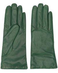 P.A.R.O.S.H. Классические Перчатки - Зеленый