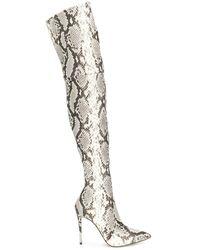 Casadei - スネークパターン ブーツ - Lyst