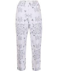 Macgraw Non Chalant Trousers - Multicolour