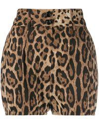Dolce & Gabbana Leopard-print High-waisted Shorts - Многоцветный