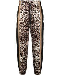 Dolce & Gabbana レオパード トラックパンツ - ブラック