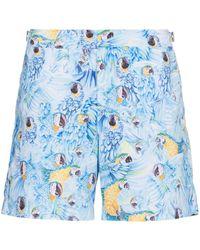 Orlebar Brown Bulldog Parrot Print Swim Shorts - Blauw