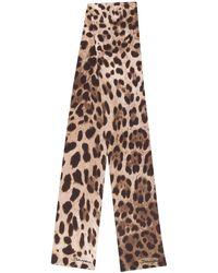Dolce & Gabbana Stropdas Met Luipaardprint - Meerkleurig