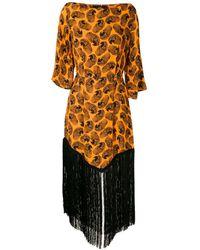 EVA Arara Printed Midi Dress - Orange