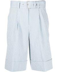 Peserico Stripe-print Belted Shorts - Blue