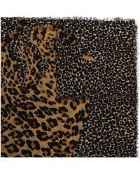 Saint Laurent Leopard-print Scarf - Multicolour