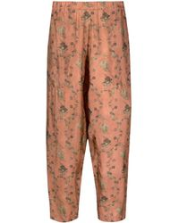 Uma Wang Pantalon court à fleurs - Rouge