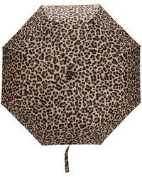 Mackintosh Зонт Ayr С Леопардовым Принтом - Многоцветный