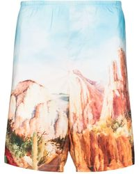 Palm Angels Canyon Print Swim Shorts - Multicolour