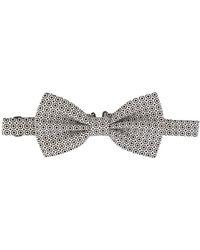 Dolce & Gabbana - プリント 蝶ネクタイ - Lyst