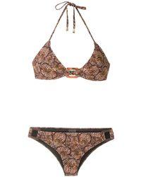 Isolda Pipa De Lycra Borakay Printed Bikini Set - Brown