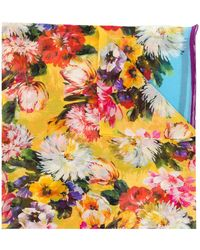 Dolce & Gabbana Floral Print Scarf - Blue