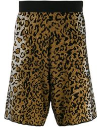 Versace Жаккардовые Шорты С Леопардовым Узором - Многоцветный