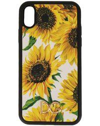 Dolce & Gabbana Sunflower Print Iphone Xr Case - Multicolor
