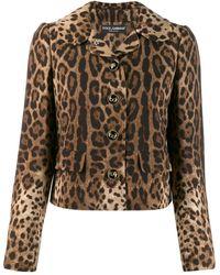 Dolce & Gabbana レオパード ジャケット - マルチカラー