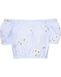 Miu Miu Floral Embroidered Crop Top - Blue