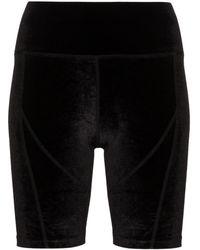 Danielle Guizio Velvet Cycling Shorts - Black