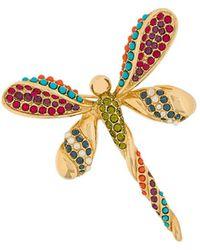 Susan Caplan D'orlan Dragonfly Brooch - Multicolour