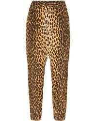 R13 Womens Brown Cheetah Print Harem Trousers