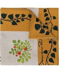 Oscar de la Renta Botanical Branches Embroidery Scarf - White