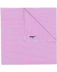 MSGM Шарф В Полоску С Логотипом - Пурпурный
