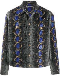 Versace Джинсовая Куртка Со Змеиным Принтом - Многоцветный
