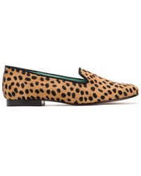 Blue Bird Shoes Animal Print Loafers - Multicolor