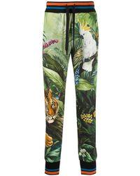Dolce & Gabbana Pantalon de jogging imprimé à lien de resserrage - Vert