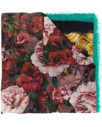 Dolce & Gabbana Sjaal Met Roosprint - Groen