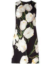 Dolce & Gabbana - Tulip Print Dress - Lyst