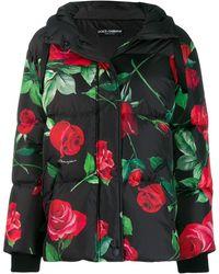 Dolce & Gabbana Пуховик С Капюшоном И Цветочным Принтом - Черный