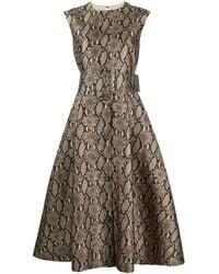 MSGM ベルテッド プリント ドレス - ブラウン