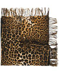 Saint Laurent Leopard-print Scarf - Brown
