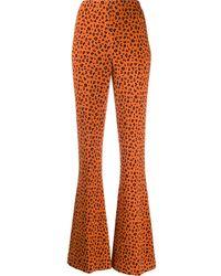 Miu Miu Leopard-print Flared Trousers - Orange