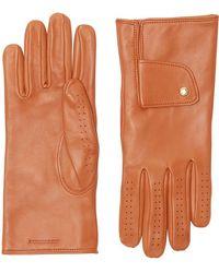 Burberry Перчатки С Кашемировой Подкладкой - Многоцветный