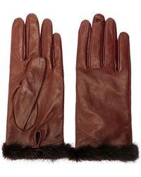 Blumarine Fur Trimmed Gloves - Brown