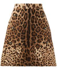 Dolce & Gabbana Леопардовая Юбка А-силуэта - Многоцветный