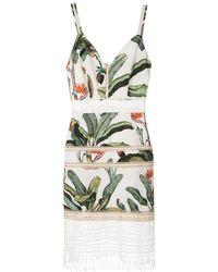 PATBO Tropical-print Lace-insert Mini Dress - Green