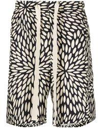 Paura Floral-burst Shorts - Black