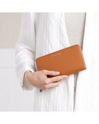 Calvin Klein Zip Around Wallet - Bruin