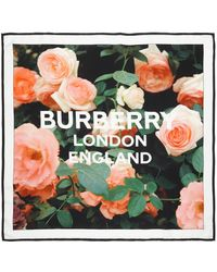 Burberry Flower Printed Scarf Rose Pink