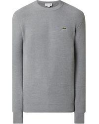 Lacoste Pullover aus Baumwollmischung - Mettallic