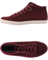 Pointer | High-tops & Trainers | Lyst