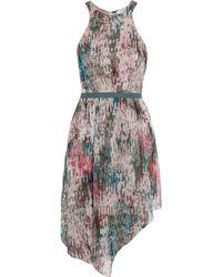 Elizabeth And James Liv Printed Silk-Chiffon Dress - Lyst
